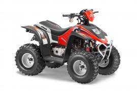 Квадроцикл STELS ATV 50 C