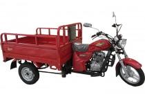 Мотоцикл ДЕСНА 200 Трицикл